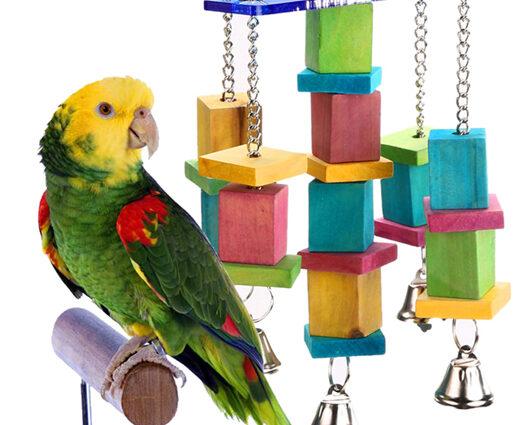 Fából készült papagájjátékunk élénk színei azonnal felkeltik madarad figyelmét.